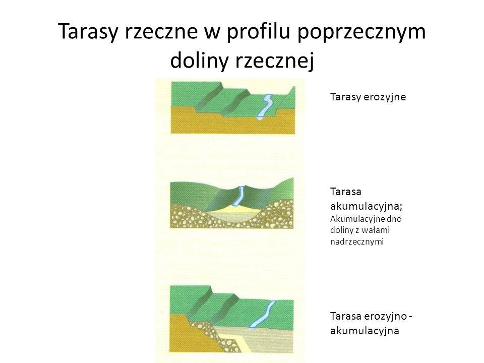Tarasy rzeczne w profilu poprzecznym doliny rzecznej Tarasy erozyjne Tarasa akumulacyjna; Akumulacyjne dno doliny z wałami nadrzecznymi Tarasa erozyjn