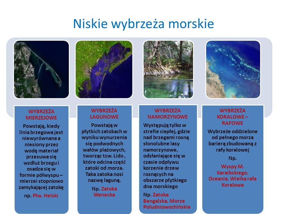 Niskie wybrzeża morskie WYBRZEŻA MIERZEJOWE Powstają, kiedy linia brzegowa jest niewyrównana a niesiony przez wodę materiał przesuwa się wzdłuż brzegu
