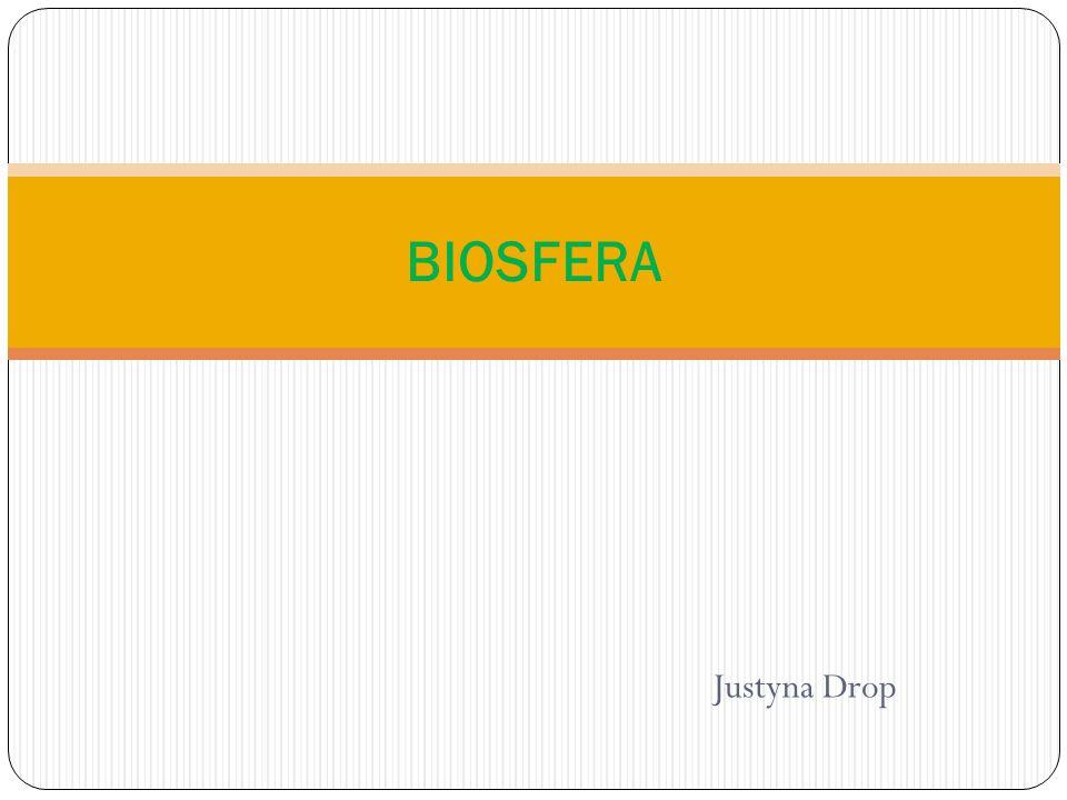 Biosfera Biosfera - żywa powłoka ziemi wraz ze środowiskiem życia organizmów, obejmująca powierzchniową warstwę skorupy ziemskiej (litosfera), wszystkie wody (hydrosfera) i dolne warstwy atmosfery (troposfera).