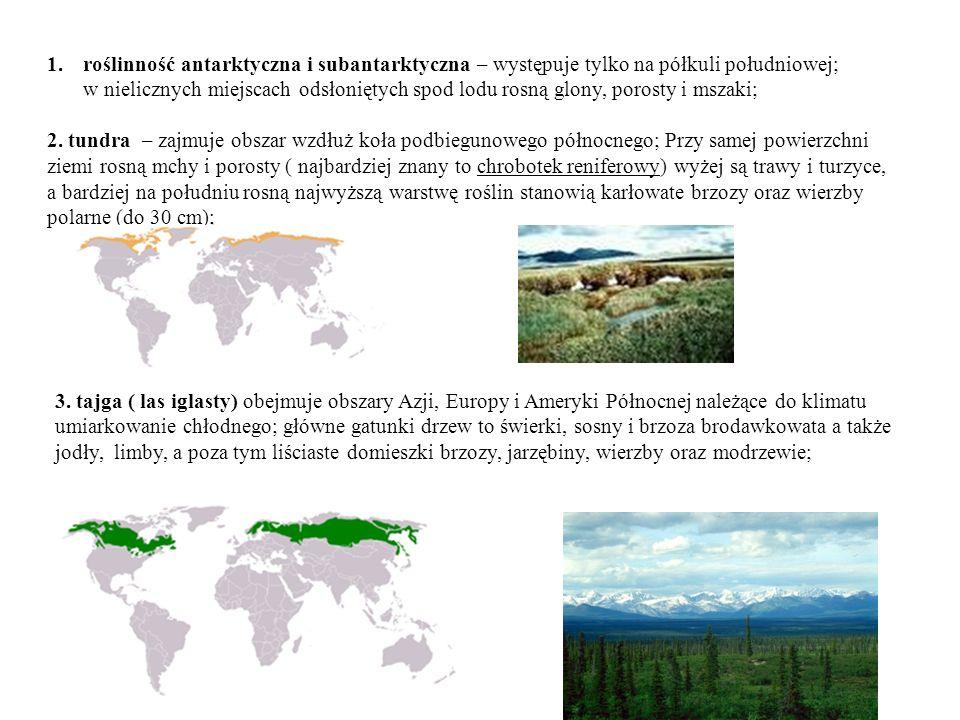 1.roślinność antarktyczna i subantarktyczna – występuje tylko na półkuli południowej; w nielicznych miejscach odsłoniętych spod lodu rosną glony, porosty i mszaki; 2.