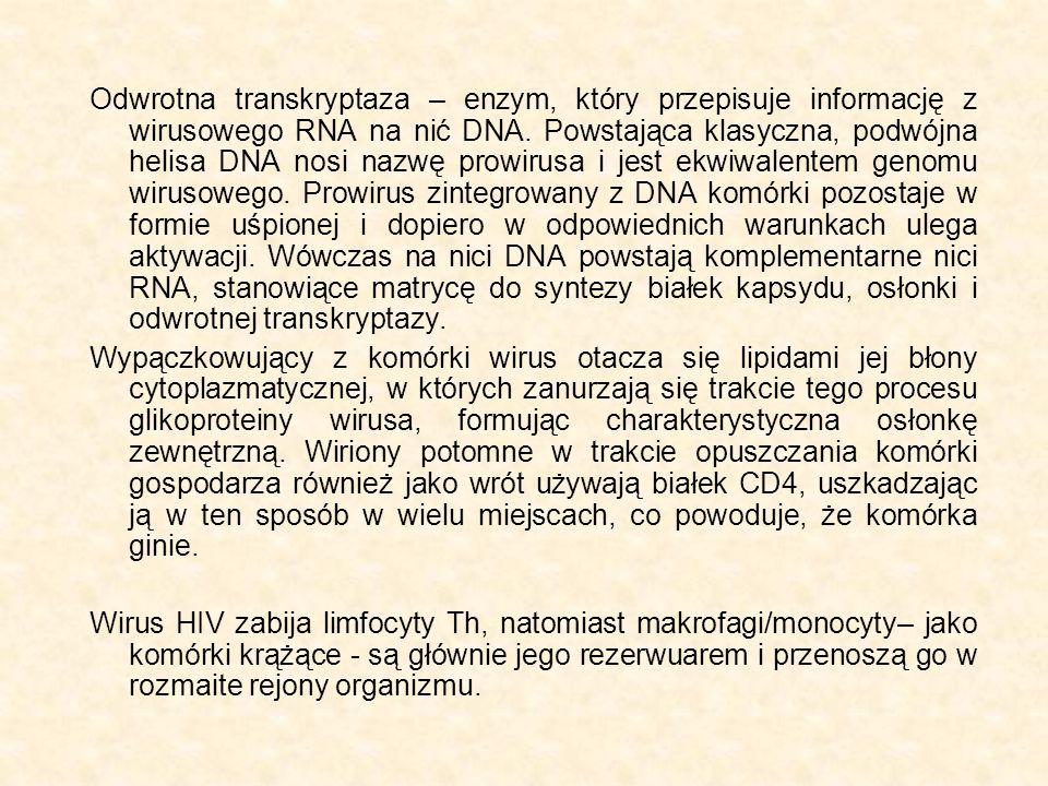 Odwrotna transkryptaza – enzym, który przepisuje informację z wirusowego RNA na nić DNA. Powstająca klasyczna, podwójna helisa DNA nosi nazwę prowirus