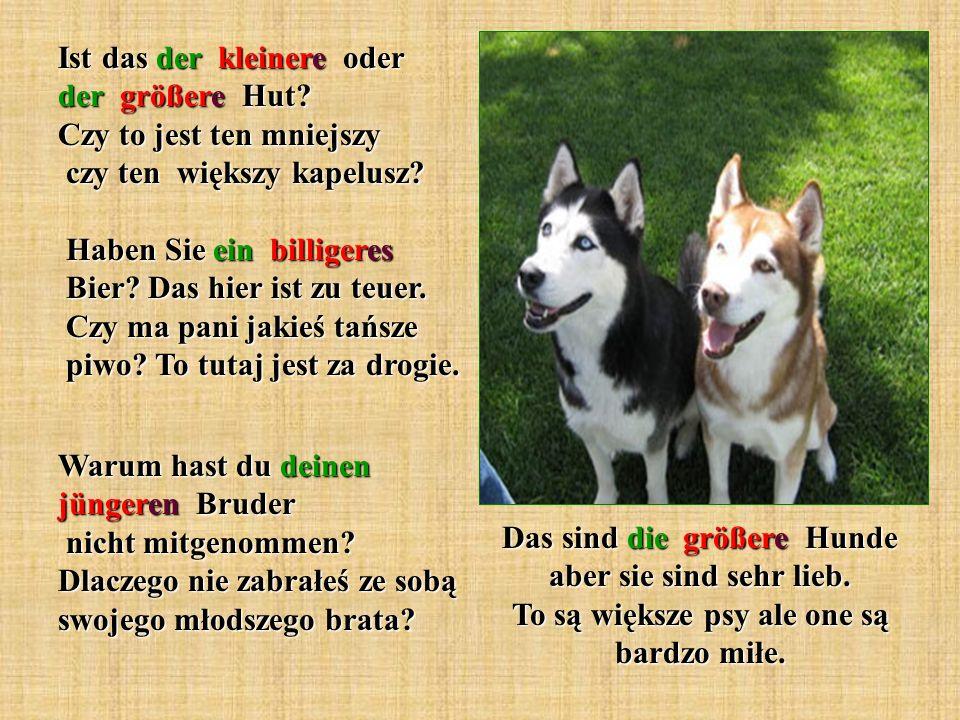 Das sind die größere Hunde aber sie sind sehr lieb.