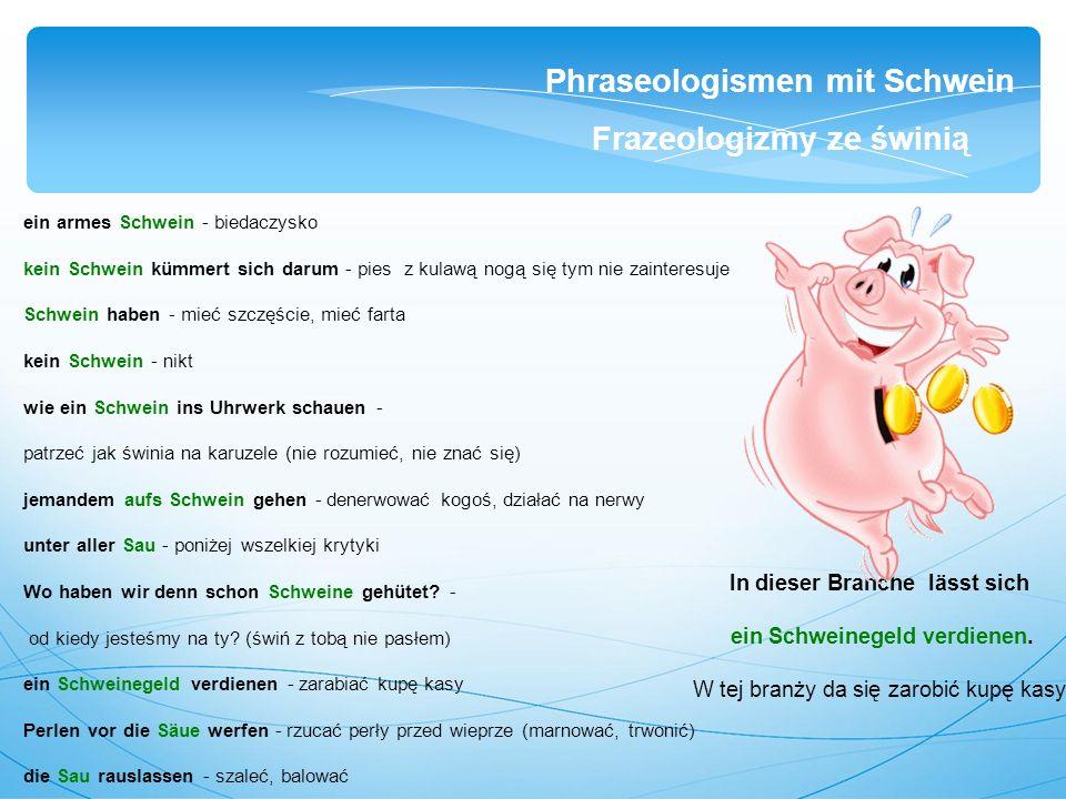 ein armes Schwein - biedaczysko kein Schwein kümmert sich darum - pies z kulawą nogą się tym nie zainteresuje Schwein haben - mieć szczęście, mieć farta kein Schwein - nikt wie ein Schwein ins Uhrwerk schauen - patrzeć jak świnia na karuzele (nie rozumieć, nie znać się) jemandem aufs Schwein gehen - denerwować kogoś, działać na nerwy unter aller Sau - poniżej wszelkiej krytyki Wo haben wir denn schon Schweine gehütet.
