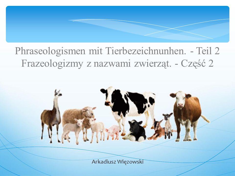 Phraseologismen mit Tierbezeichnunhen.- Teil 2 Frazeologizmy z nazwami zwierząt.