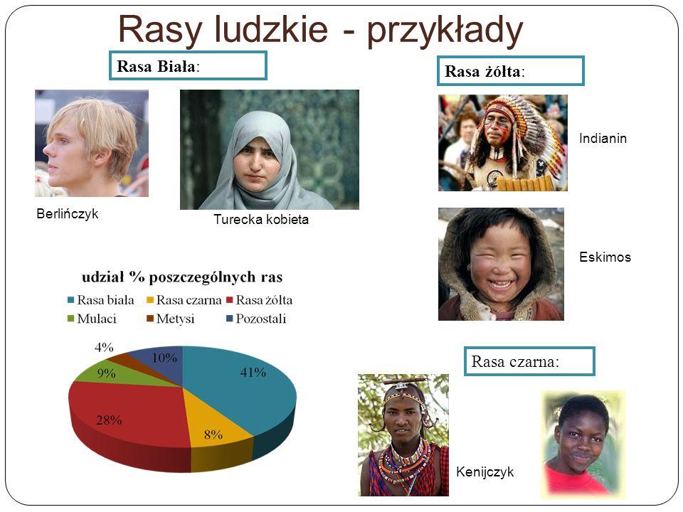 Rasy ludzkie - przykłady Berlińczyk Rasa Biała: Turecka kobieta Rasa żółta: Indianin Eskimos Rasa czarna: Kenijczyk