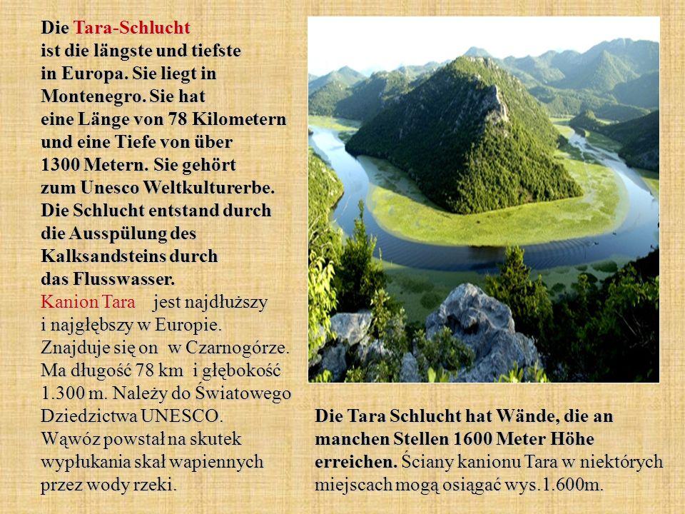 Die Tara-Schlucht ist die längste und tiefste in Europa. Sie liegt in Montenegro. Sie hat eine Länge von 78 Kilometern und eine Tiefe von über 1300 Me