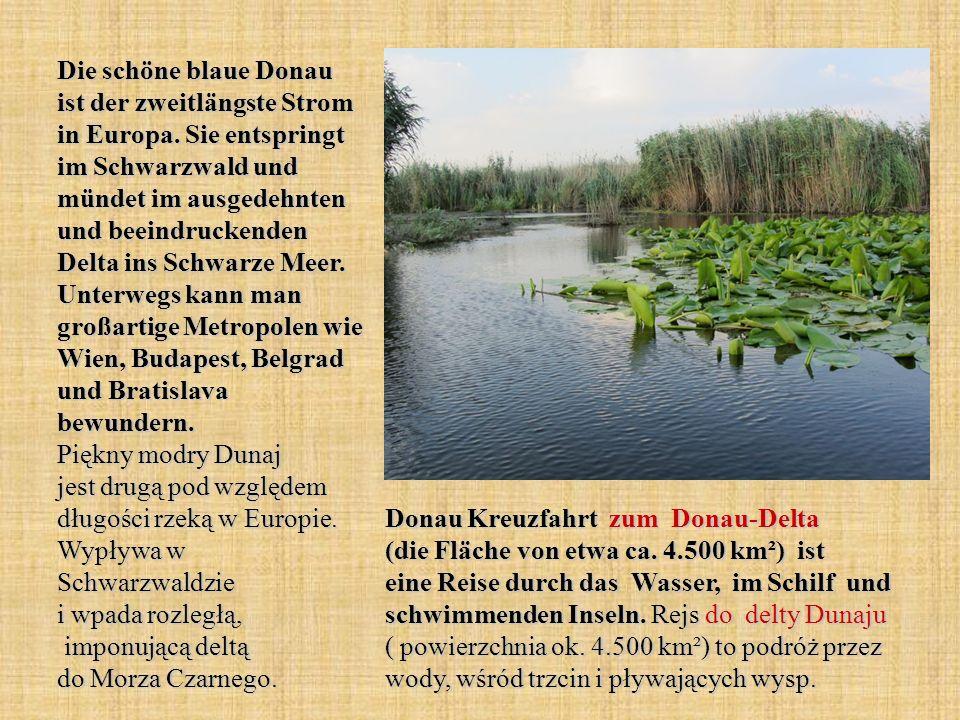 Die schöne blaue Donau ist der zweitlängste Strom in Europa. Sie entspringt im Schwarzwald und mündet im ausgedehnten und beeindruckenden Delta ins Sc