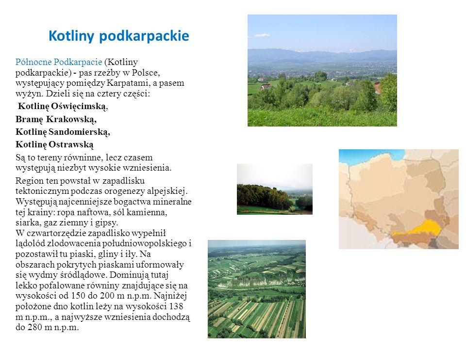 Kotliny podkarpackie Północne Podkarpacie (Kotliny podkarpackie) - pas rzeźby w Polsce, występujący pomiędzy Karpatami, a pasem wyżyn. Dzieli się na c