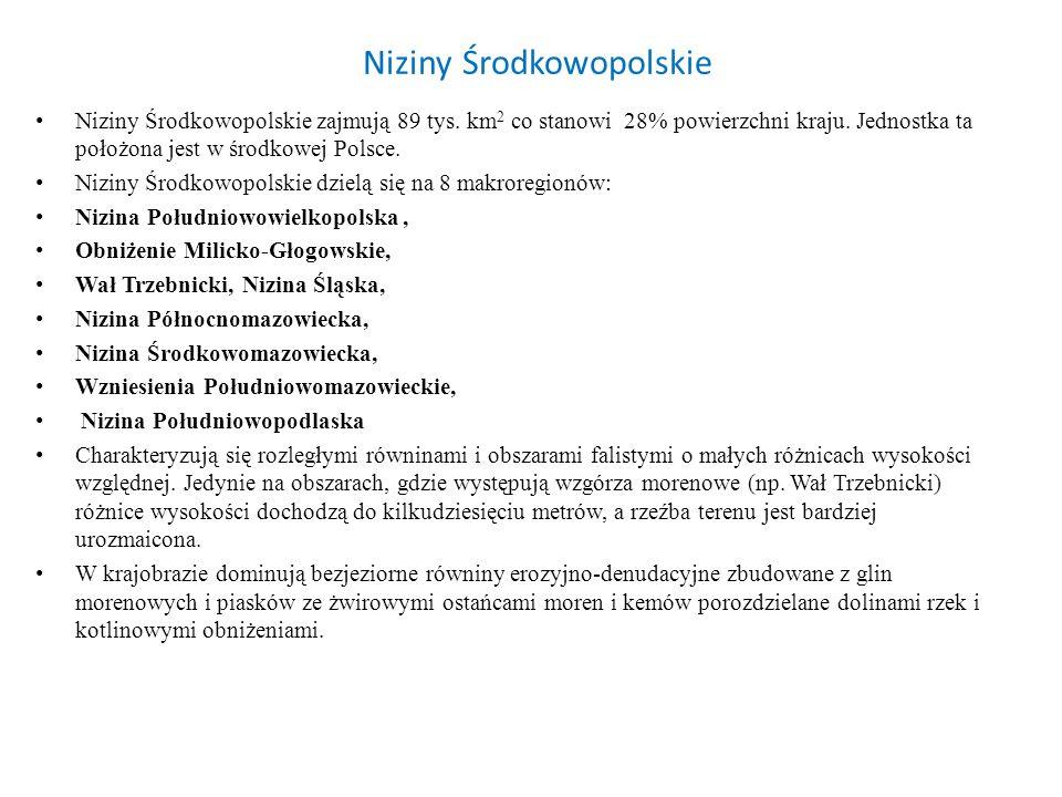 Niziny Środkowopolskie Niziny Środkowopolskie zajmują 89 tys. km 2 co stanowi 28% powierzchni kraju. Jednostka ta położona jest w środkowej Polsce. Ni