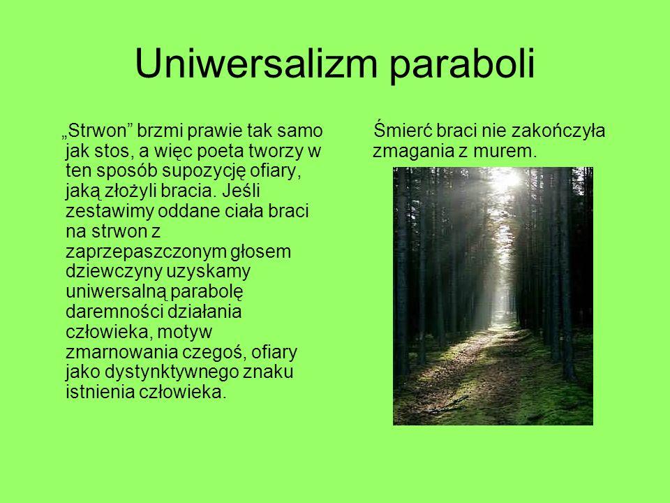 Uniwersalizm paraboli Strwon brzmi prawie tak samo jak stos, a więc poeta tworzy w ten sposób supozycję ofiary, jaką złożyli bracia. Jeśli zestawimy o
