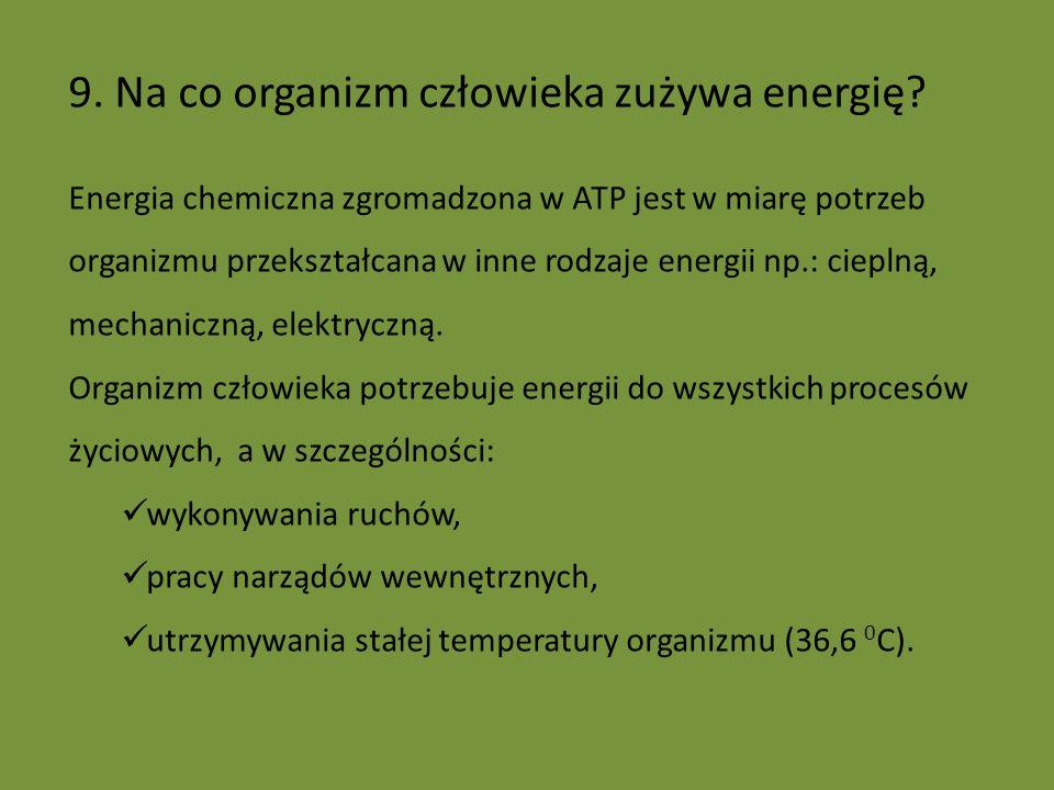 9. Na co organizm człowieka zużywa energię? Energia chemiczna zgromadzona w ATP jest w miarę potrzeb organizmu przekształcana w inne rodzaje energii n