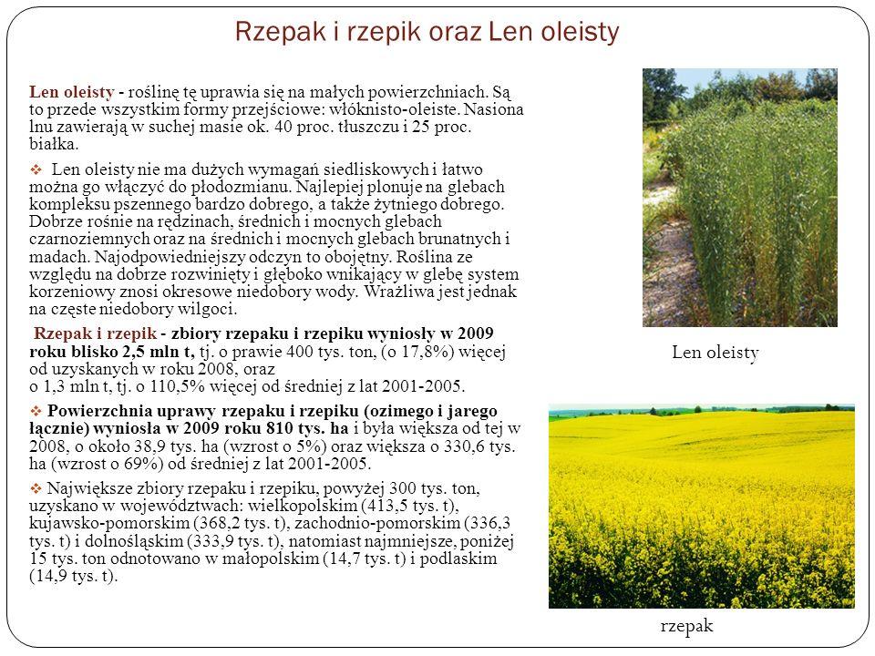 Rzepak i rzepik oraz Len oleisty Len oleisty - roślinę tę uprawia się na małych powierzchniach. Są to przede wszystkim formy przejściowe: włóknisto-ol