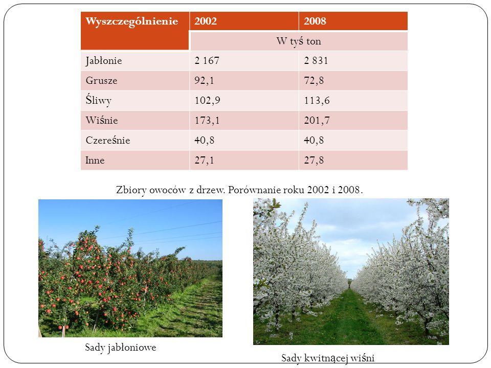 Wyszczególnienie20022008 W ty ś ton Jabłonie2 1672 831 Grusze92,172,8 Ś liwy102,9113,6 Wi ś nie173,1201,7 Czere ś nie40,8 Inne27,127,8 Zbiory owoców z