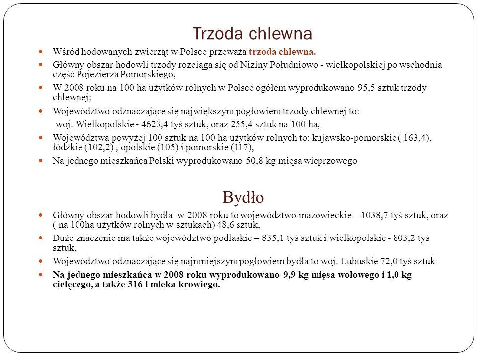 Trzoda chlewna Wśród hodowanych zwierząt w Polsce przeważa trzoda chlewna. Główny obszar hodowli trzody rozciąga się od Niziny Południowo - wielkopols