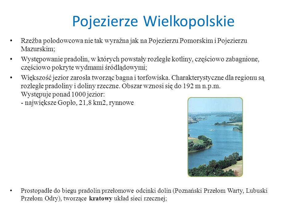 Pojezierze Wielkopolskie Rzeźba polodowcowa nie tak wyraźna jak na Pojezierzu Pomorskim i Pojezierzu Mazurskim; Występowanie pradolin, w których powst