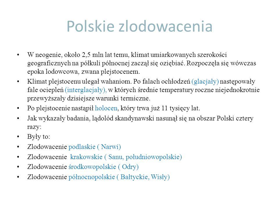 Polskie zlodowacenia W neogenie, około 2,5 mln lat temu, klimat umiarkowanych szerokości geograficznych na półkuli północnej zaczął się oziębiać. Rozp