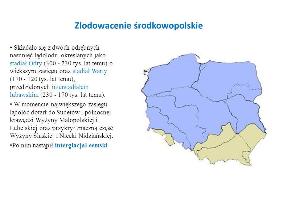 Zlodowacenie środkowopolskie Składało się z dwóch odrębnych nasunięć lądolodu, określanych jako stadiał Odry (300 - 230 tys. lat temu) o większym zasi