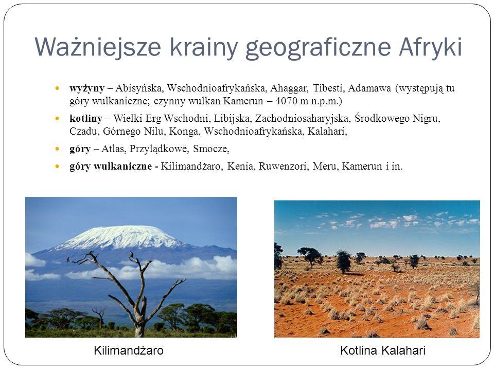 Ważniejsze krainy geograficzne Afryki wyżyny – Abisyńska, Wschodnioafrykańska, Ahaggar, Tibesti, Adamawa (występują tu góry wulkaniczne; czynny wulkan