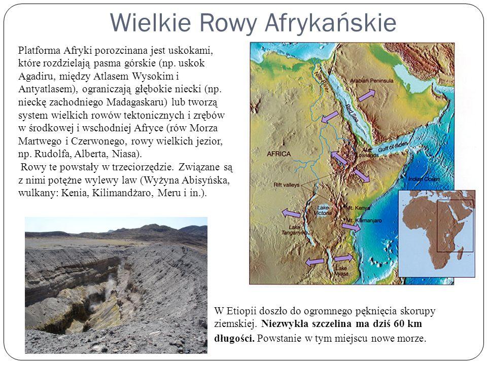 Najniższe obniżenia rowów tektonicznych wypełniają wody jezior: Kiwu, Tanganika, Niasa Jezioro Tanganika - Zajmuje powierzchnię 34,4 tys.