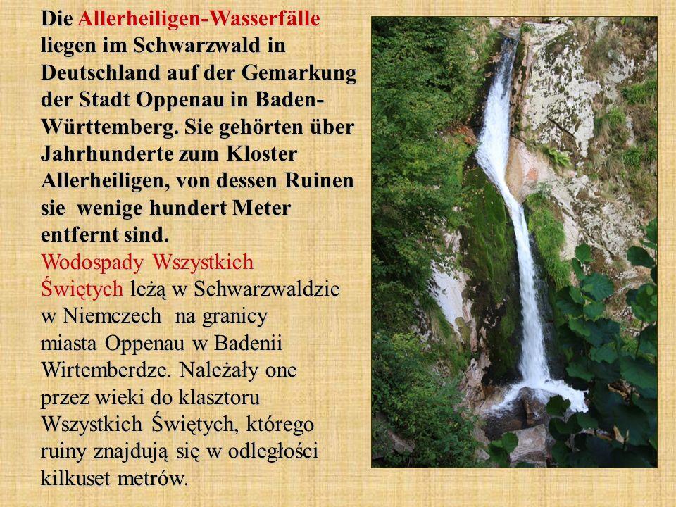 Die Allerheiligen-Wasserfälle liegen im Schwarzwald in Deutschland auf der Gemarkung der Stadt Oppenau in Baden- Württemberg. Sie gehörten über Jahrhu