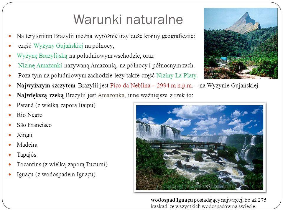 Warunki naturalne Na terytorium Brazylii można wyróżnić trzy duże krainy geograficzne: część Wyżyny Gujańskiej na północy, Wyżynę Brazylijską na połud