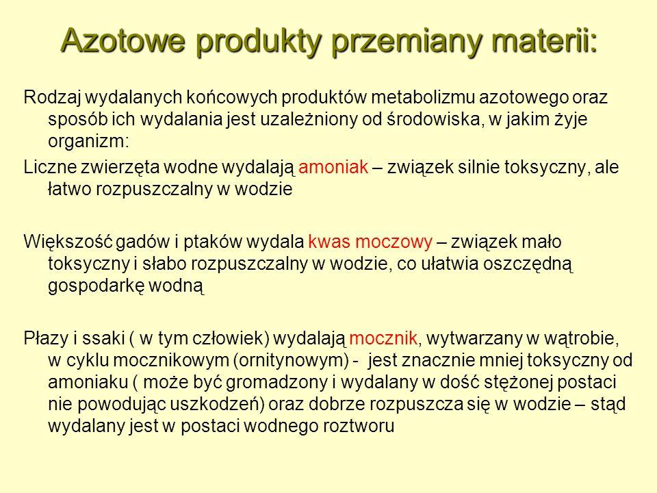 Azotowe produkty przemiany materii: Rodzaj wydalanych końcowych produktów metabolizmu azotowego oraz sposób ich wydalania jest uzależniony od środowis
