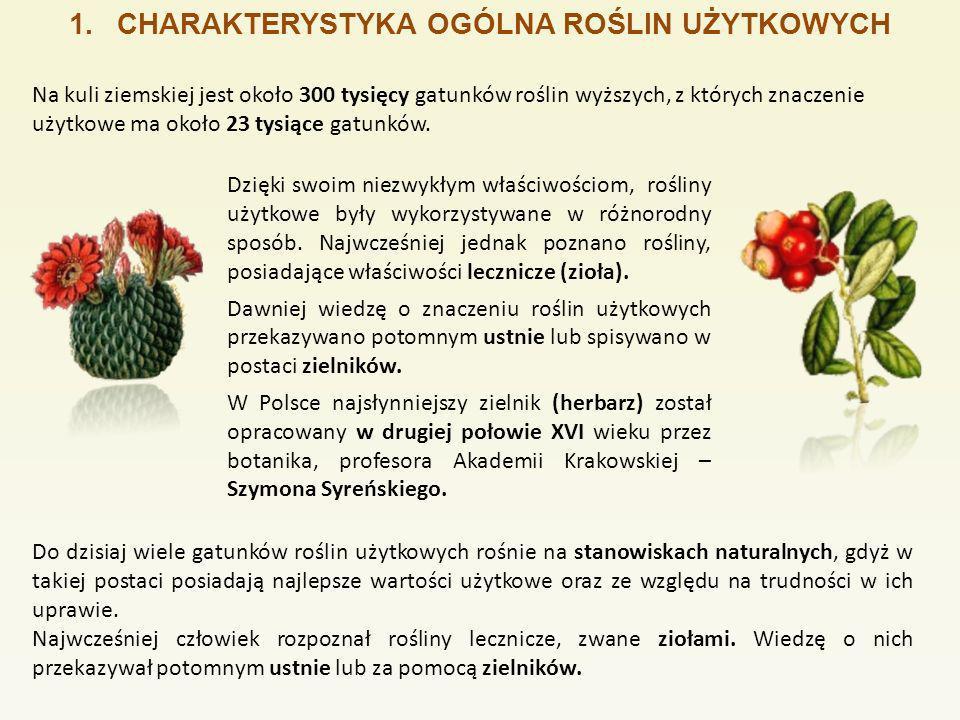 1.CHARAKTERYSTYKA ROŚLIN SEGETALNYCH GatunekOpisGatunekOpis Roślina jednoroczna.