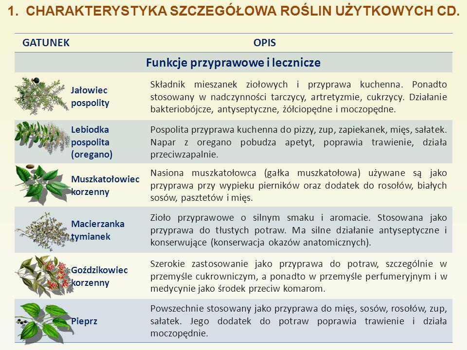 1.CHARAKTERYSTYKA SZCZEGÓŁOWA ROŚLIN UŻYTKOWYCH CD.