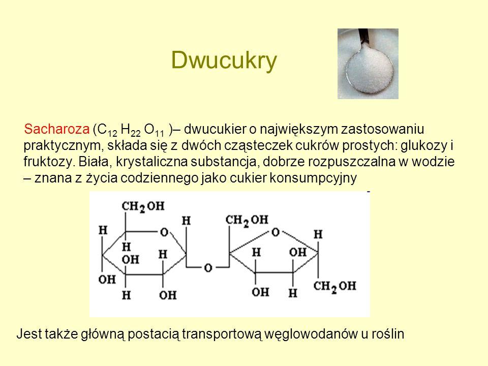 Dwucukry Sacharoza (C 12 H 22 O 11 )– dwucukier o największym zastosowaniu praktycznym, składa się z dwóch cząsteczek cukrów prostych: glukozy i frukt