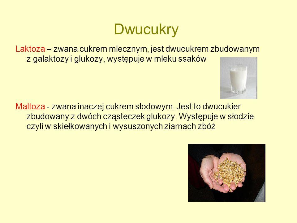 Dwucukry Laktoza – zwana cukrem mlecznym, jest dwucukrem zbudowanym z galaktozy i glukozy, występuje w mleku ssaków Maltoza - zwana inaczej cukrem sło