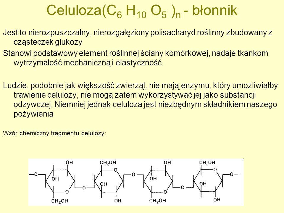 Celuloza(C 6 H 10 O 5 ) n - błonnik Jest to nierozpuszczalny, nierozgałęziony polisacharyd roślinny zbudowany z cząsteczek glukozy Stanowi podstawowy