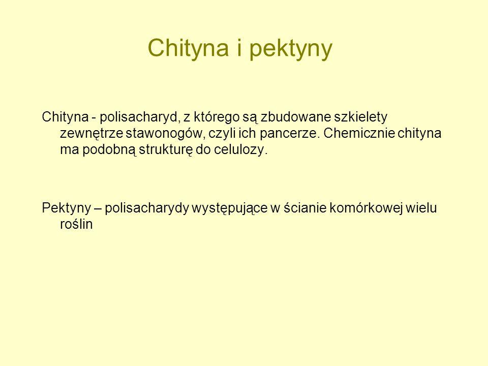 Chityna i pektyny Chityna - polisacharyd, z którego są zbudowane szkielety zewnętrze stawonogów, czyli ich pancerze. Chemicznie chityna ma podobną str