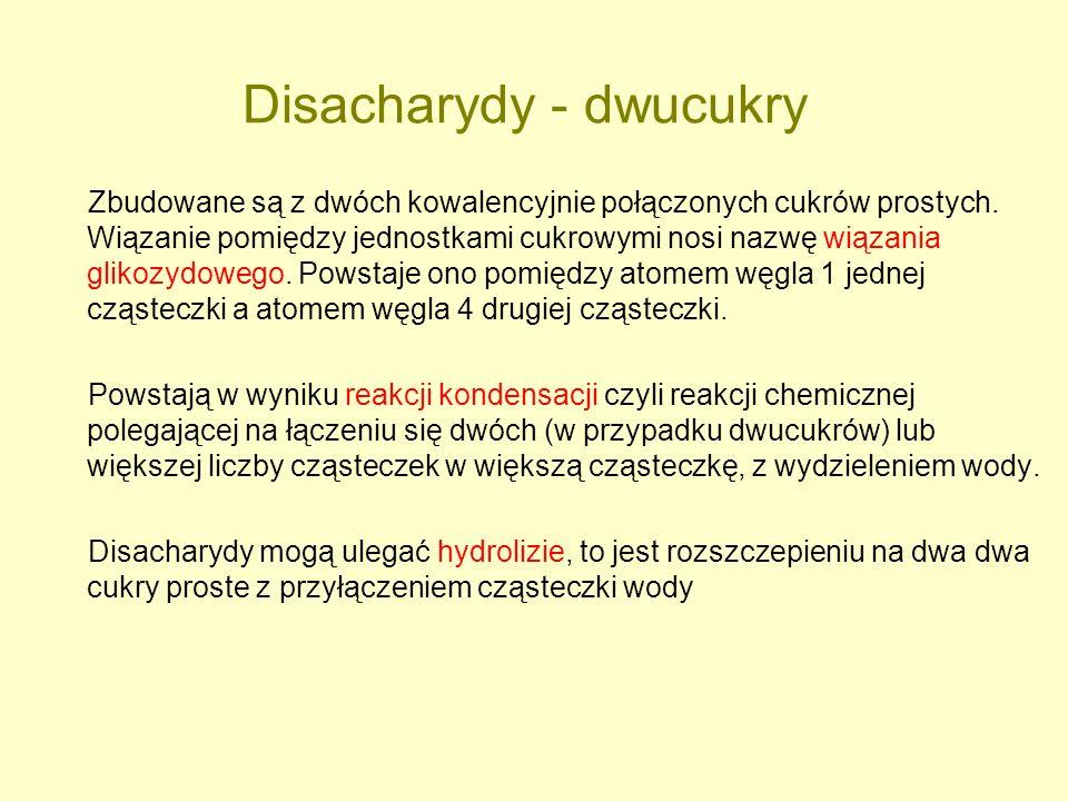 Disacharydy - dwucukry Zbudowane są z dwóch kowalencyjnie połączonych cukrów prostych. Wiązanie pomiędzy jednostkami cukrowymi nosi nazwę wiązania gli
