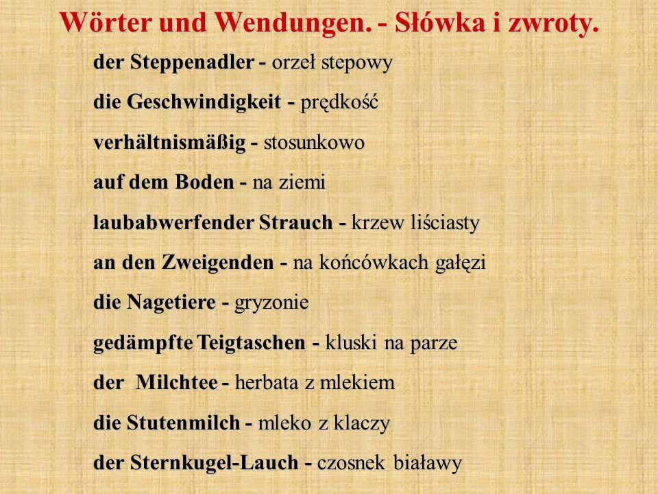 Wörter und Wendungen. - Słówka i zwroty. der Steppenadler - orzeł stepowy die Geschwindigkeit - prędkość verhältnismäßig - stosunkowo auf dem Boden -