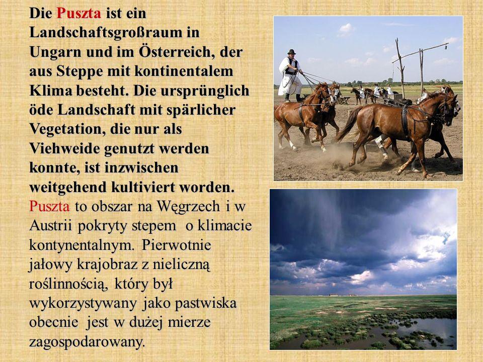 Die Puszta ist ein Landschaftsgroßraum in Ungarn und im Österreich, der aus Steppe mit kontinentalem Klima besteht. Die ursprünglich öde Landschaft mi