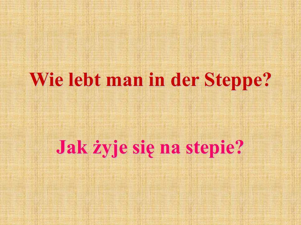 Wie lebt man in der Steppe? Jak żyje się na stepie?