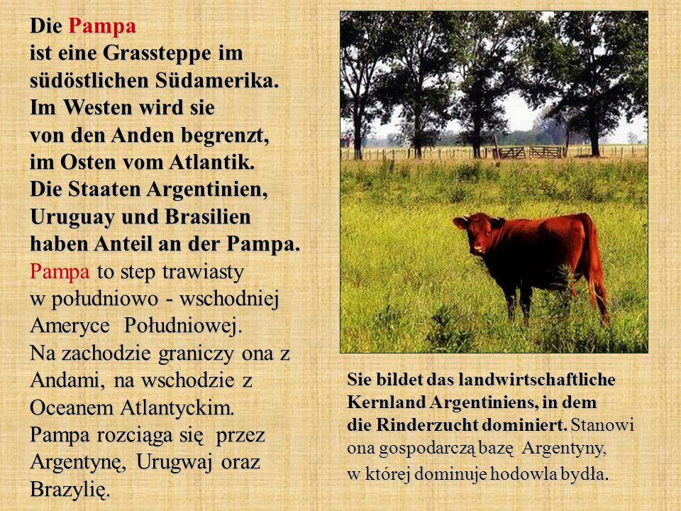 Die Pampa ist eine Grassteppe im südöstlichen Südamerika. Im Westen wird sie von den Anden begrenzt, im Osten vom Atlantik. Die Staaten Argentinien, U