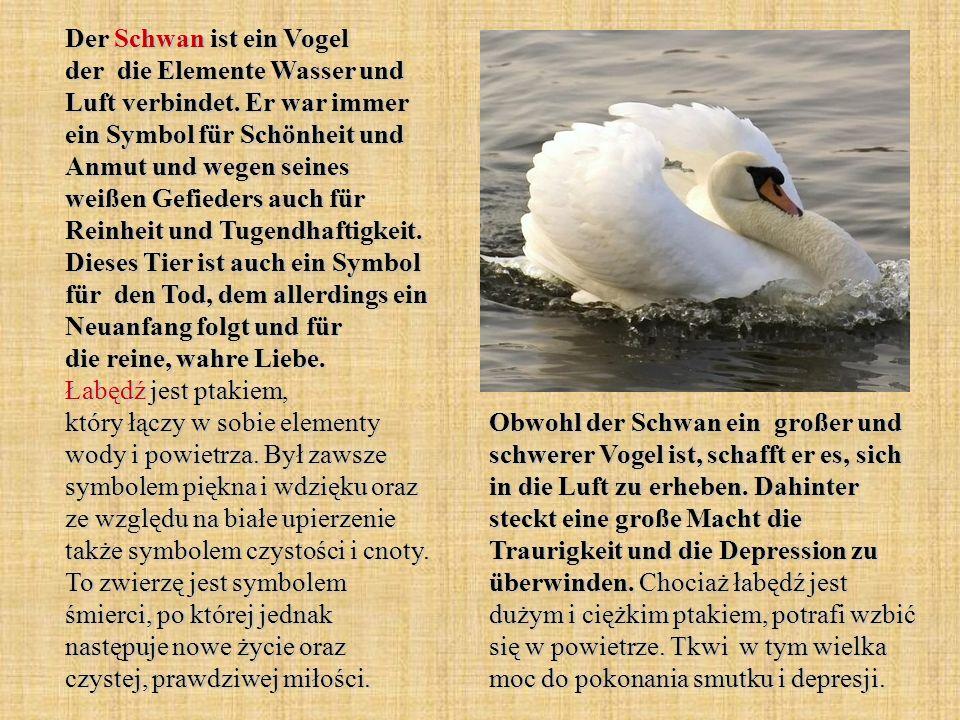 Der Schwan ist ein Vogel der die Elemente Wasser und Luft verbindet. Er war immer ein Symbol für Schönheit und Anmut und wegen seines weißen Gefieders