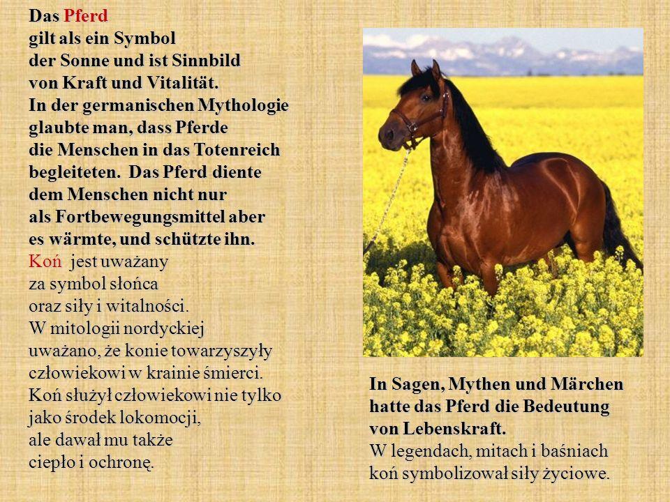Das Pferd gilt als ein Symbol der Sonne und ist Sinnbild von Kraft und Vitalität. In der germanischen Mythologie glaubte man, dass Pferde die Menschen