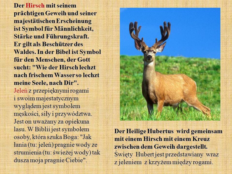 Der Hirsch mit seinem prächtigen Geweih und seiner majestätischen Erscheinung ist Symbol für Männlichkeit, Stärke und Führungskraft. Er gilt als Besch