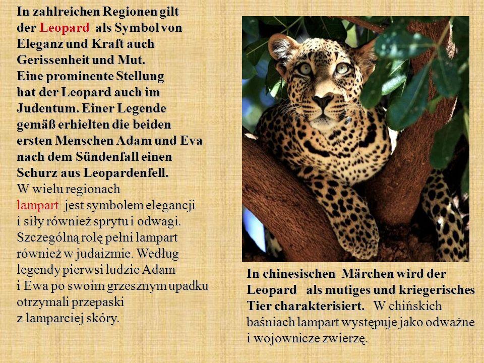 In zahlreichen Regionen gilt der Leopard als Symbol von Eleganz und Kraft auch Gerissenheit und Mut. Eine prominente Stellung hat der Leopard auch im