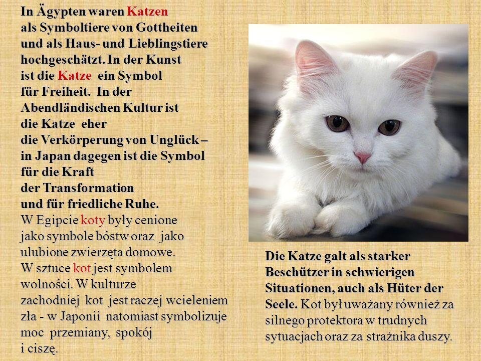 In Ägypten waren Katzen als Symboltiere von Gottheiten und als Haus- und Lieblingstiere hochgeschätzt. In der Kunst ist die Katze ein Symbol für Freih