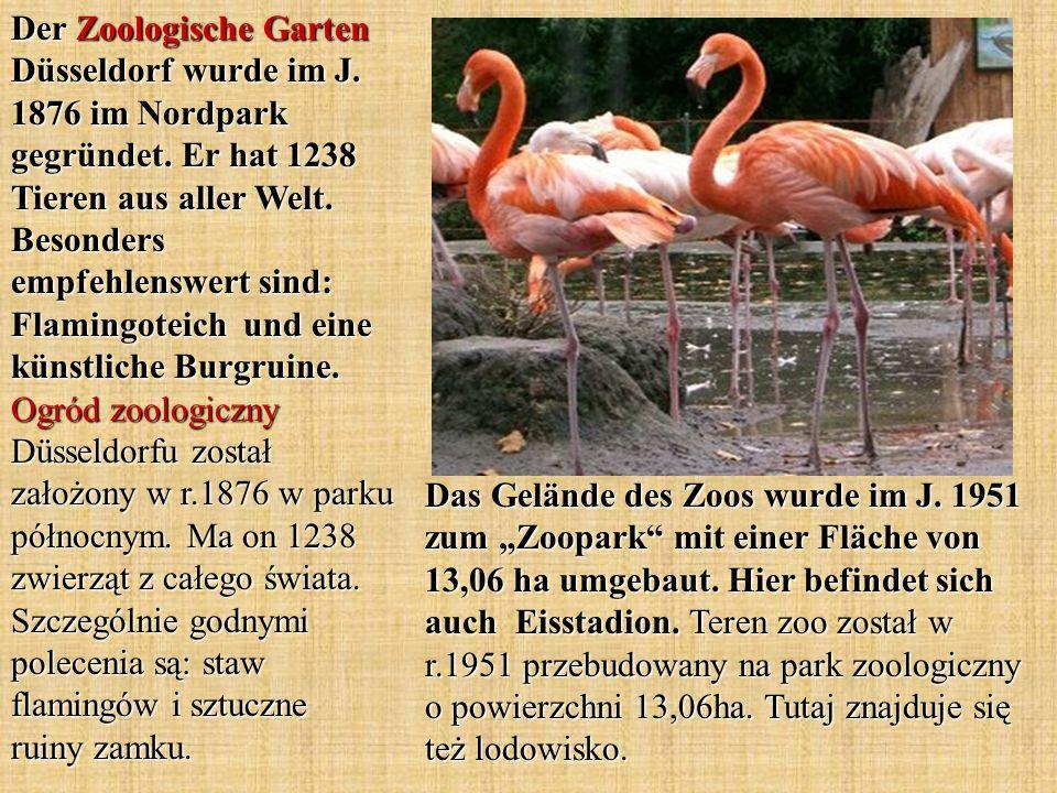 Das Gelände des Zoos wurde im J. 1951 zum Zoopark mit einer Fläche von 13,06 ha umgebaut.
