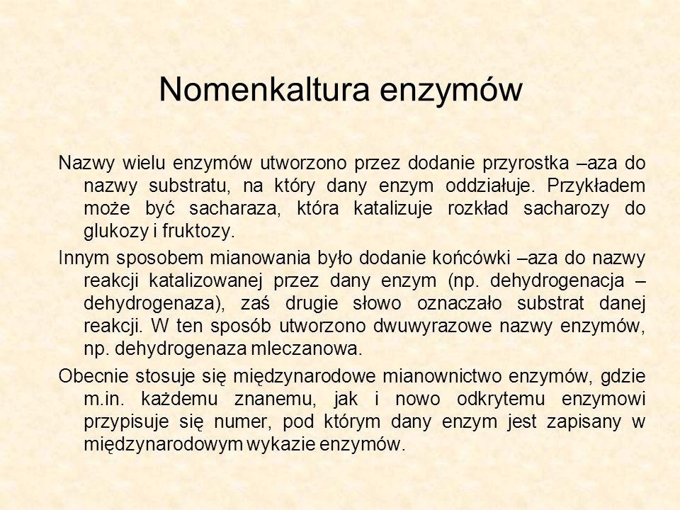 Nomenkaltura enzymów Nazwy wielu enzymów utworzono przez dodanie przyrostka –aza do nazwy substratu, na który dany enzym oddziałuje. Przykładem może b