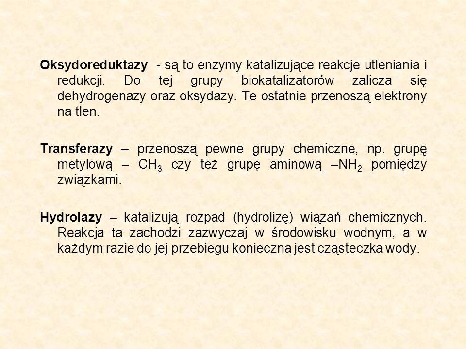 Oksydoreduktazy - są to enzymy katalizujące reakcje utleniania i redukcji. Do tej grupy biokatalizatorów zalicza się dehydrogenazy oraz oksydazy. Te o