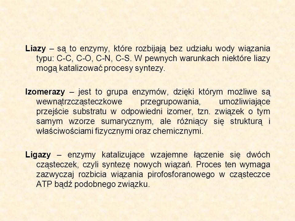 Liazy – są to enzymy, które rozbijają bez udziału wody wiązania typu: C-C, C-O, C-N, C-S. W pewnych warunkach niektóre liazy mogą katalizować procesy