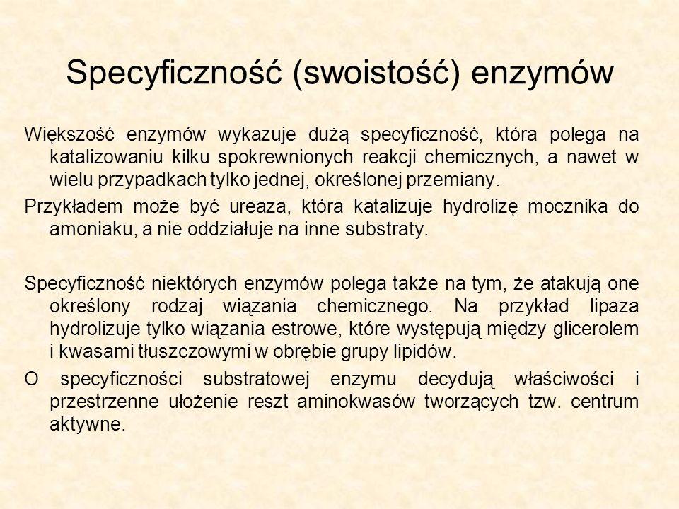 Specyficzność (swoistość) enzymów Większość enzymów wykazuje dużą specyficzność, która polega na katalizowaniu kilku spokrewnionych reakcji chemicznyc