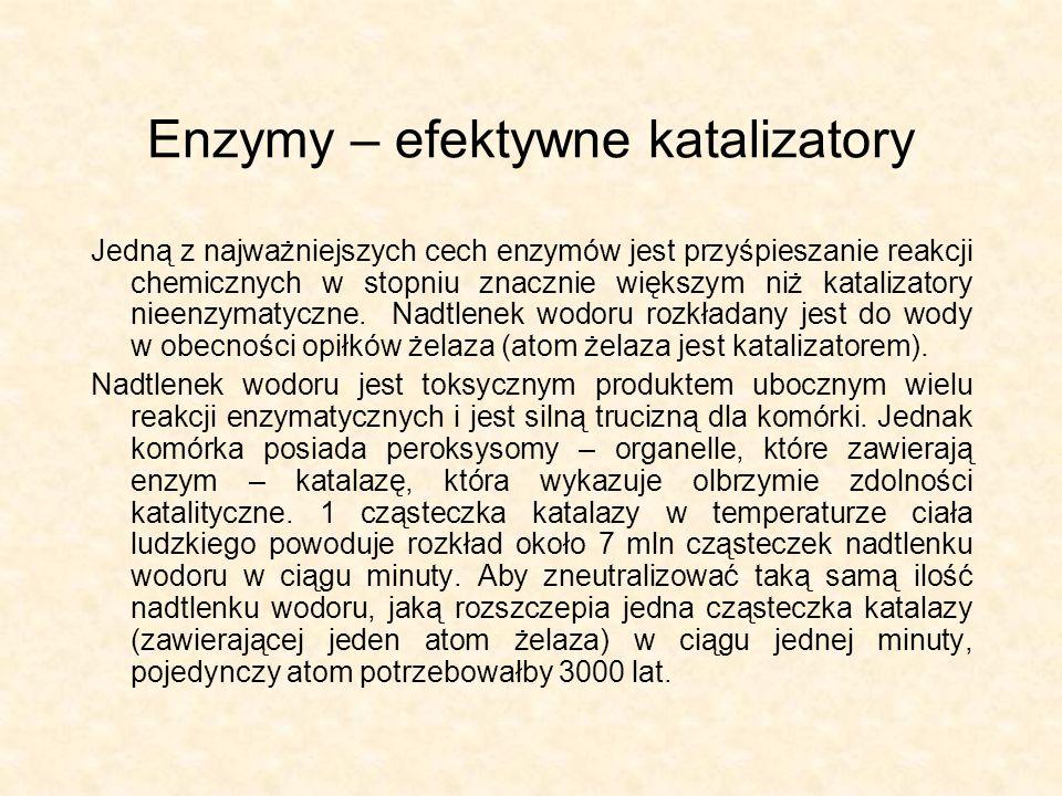 Enzymy – efektywne katalizatory Jedną z najważniejszych cech enzymów jest przyśpieszanie reakcji chemicznych w stopniu znacznie większym niż katalizat