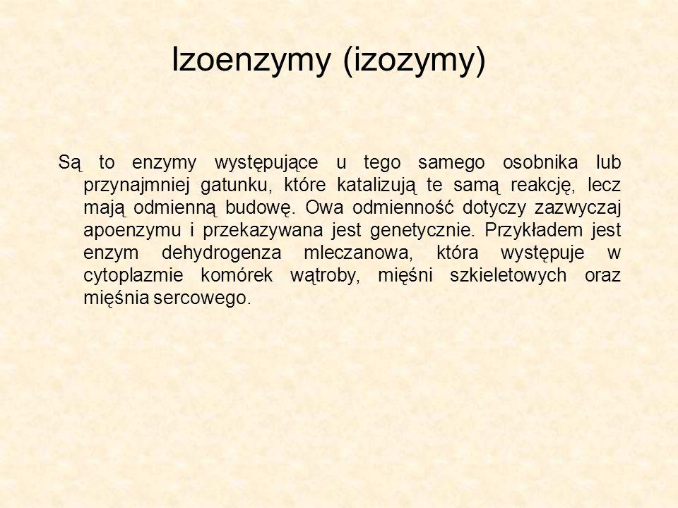 Izoenzymy (izozymy) Są to enzymy występujące u tego samego osobnika lub przynajmniej gatunku, które katalizują te samą reakcję, lecz mają odmienną bud