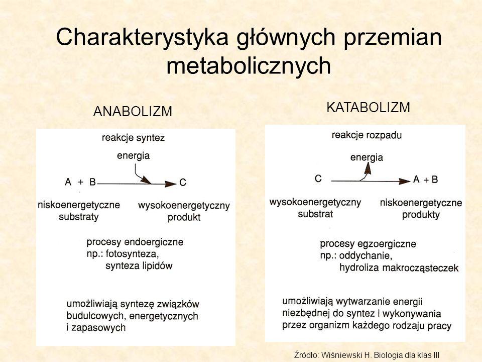 Charakterystyka głównych przemian metabolicznych ANABOLIZM KATABOLIZM Źródło: Wiśniewski H. Biologia dla klas III